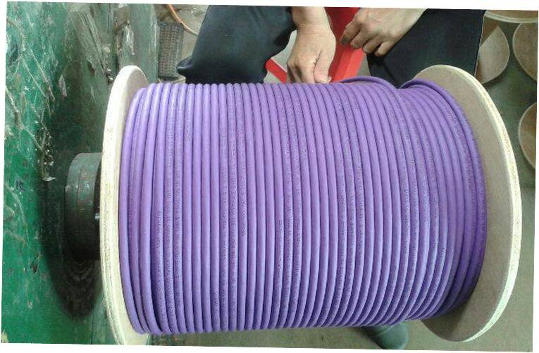 0.58mm Bc Ccu DC 100% Copper LAN CAT6 SFTP Cable Purple LSZH 100 Foot Cat 6 Cable