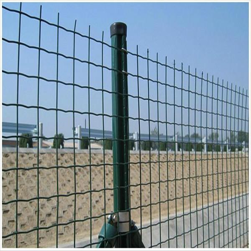 China Green Color PVC Coated Welded Wire Mesh Panel to USA Photos ...