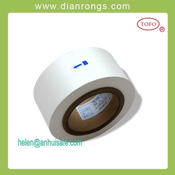 Lithium Ion Electric Vehicle Battery Separator Material PP/PE Film