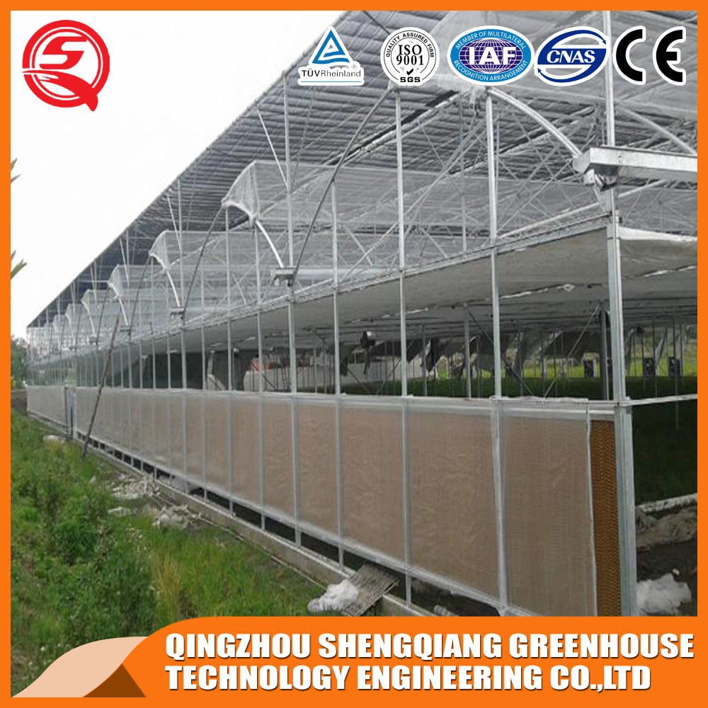 Agriculture Multi Span Plastic Green House for Vegeatbles pictures & photos