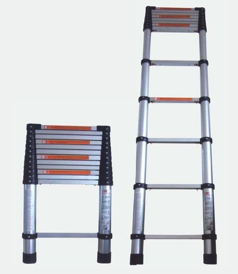 Telescopic Extension Ladder (1263105)