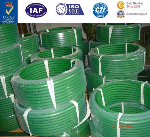 PU Rough/Smooth Round Conveyor Belt/Cord