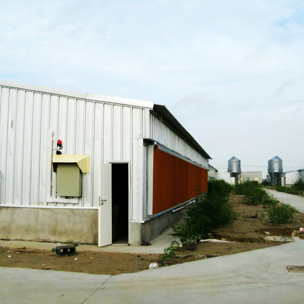 Prefab Steel Structure Poultry House for Chicken on Sale pictures & photos