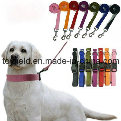 Pet Product Supply Lead Leash Cat Dog Collar