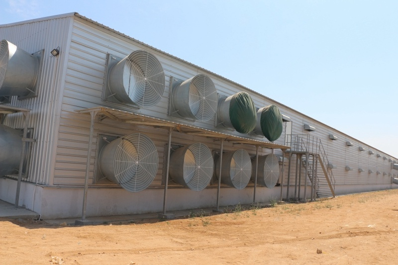 Light Steel Material Shed with Matching Equipments