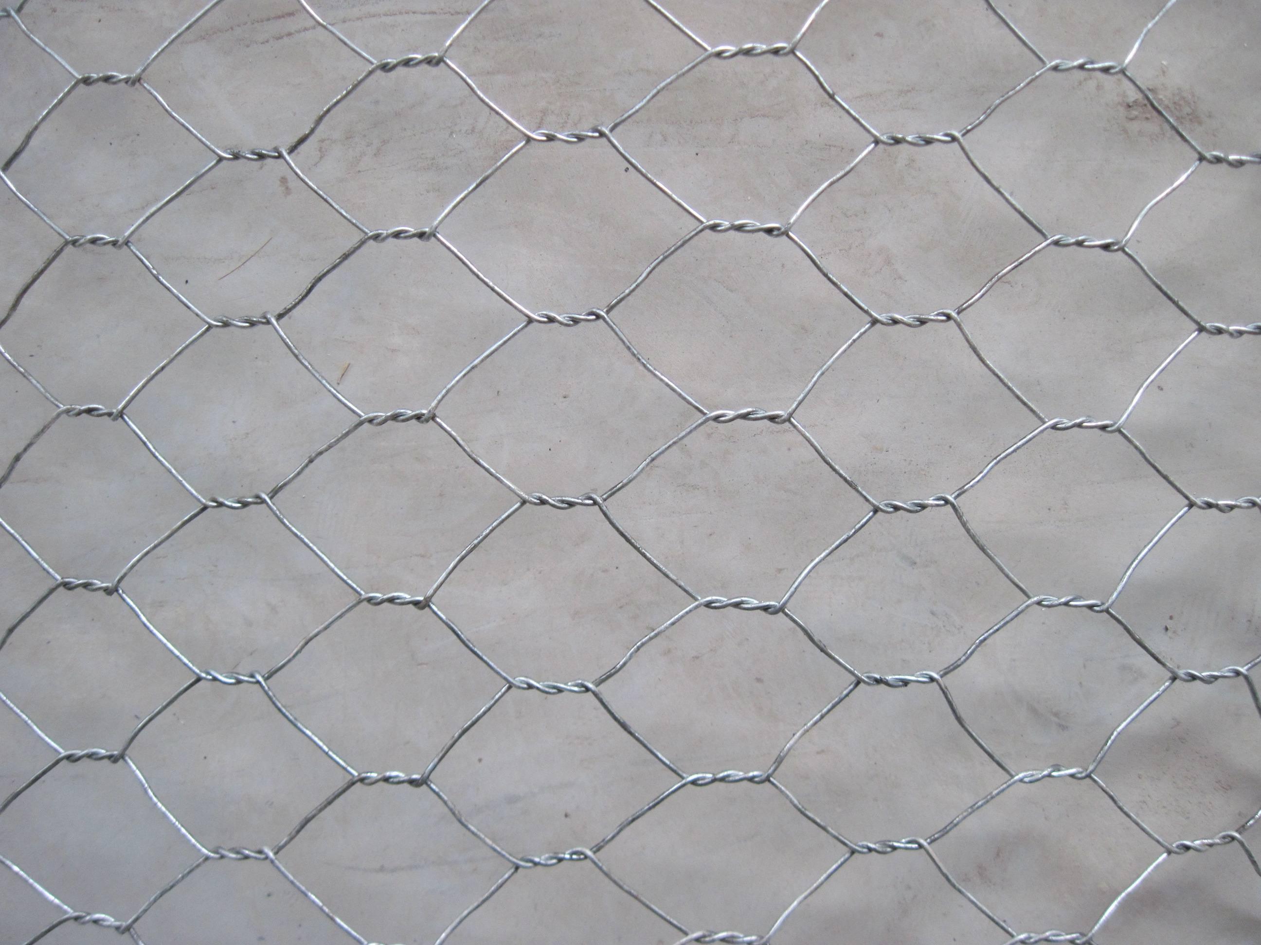 China Hot-Dipped Galvanized Hexagonal Wire Mesh Chicken Animal Wire ...