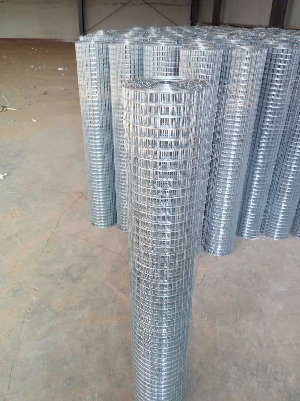 China Hot Dipped 1 Inch Galvanized Welded Wire Mesh - China PVC ...
