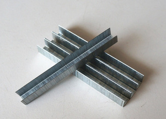 China Galvanized Durable Brad Nails/U Shaped Nails - China