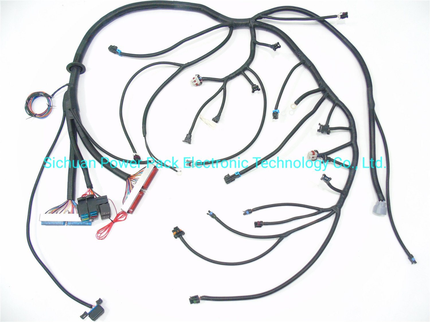 China Ls1 99-03 Vortec 4.8 5.3 6.0 Standalone Wiring Harness W/4L80e (DBC)  Ls - China Ls Wire Harness, Wiring HarnessSichuan Power Pack Electronic Technology Co., Ltd.