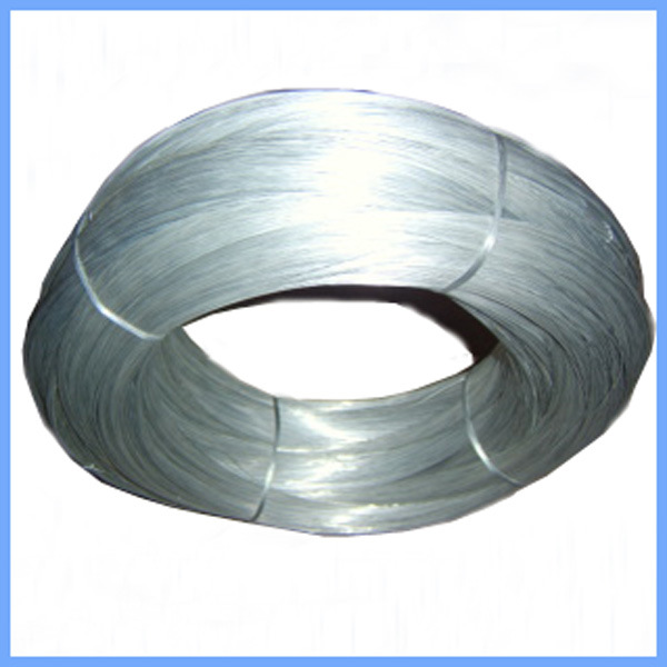 China Construction Electro Galvanized Iron Wire Photos & Pictures ...