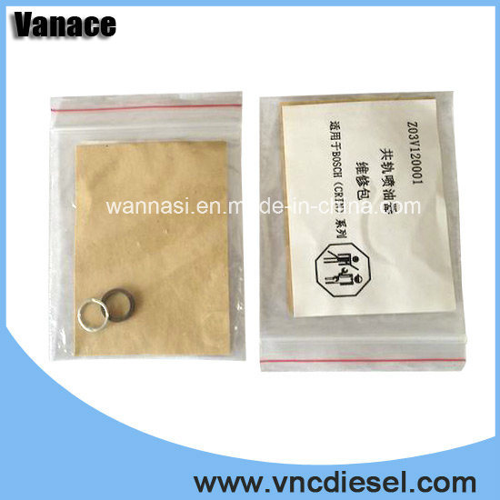 Bosch Common Rail Injector Repair Kits F00vc9002 with High Quality