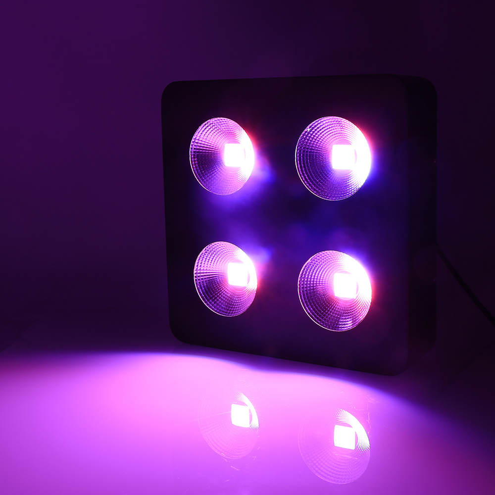 Hot Item Cob Led Indoor Plants Grow Lights With High Power