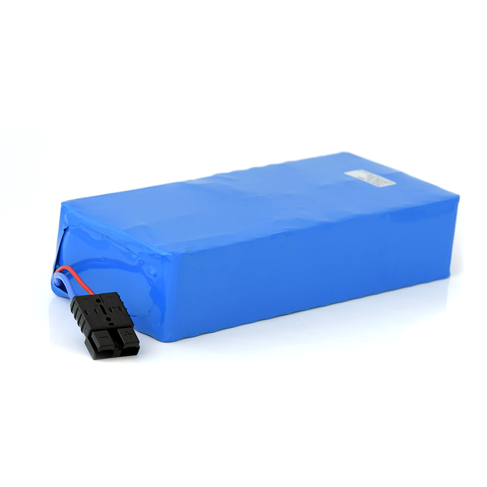 13s 8p Electric Bike Battery 48V 20ah 1000W for Rickshaw pictures & photos