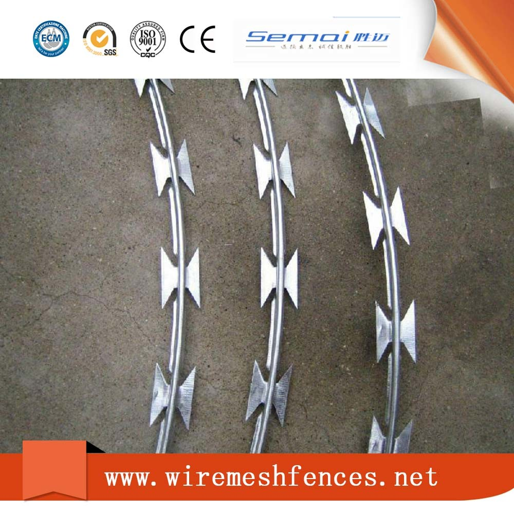 China Hot Dipped Galvanized Razor Barbed Iron Wire Mesh - China ...