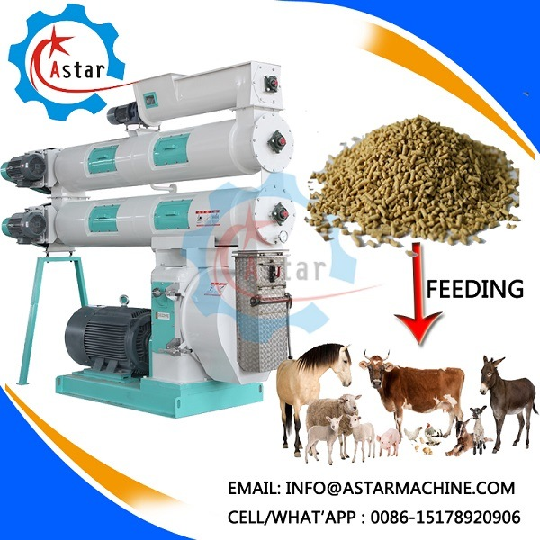 China Professional Manufacture Poultry Animal Feed Pellet Mill pictures & photos
