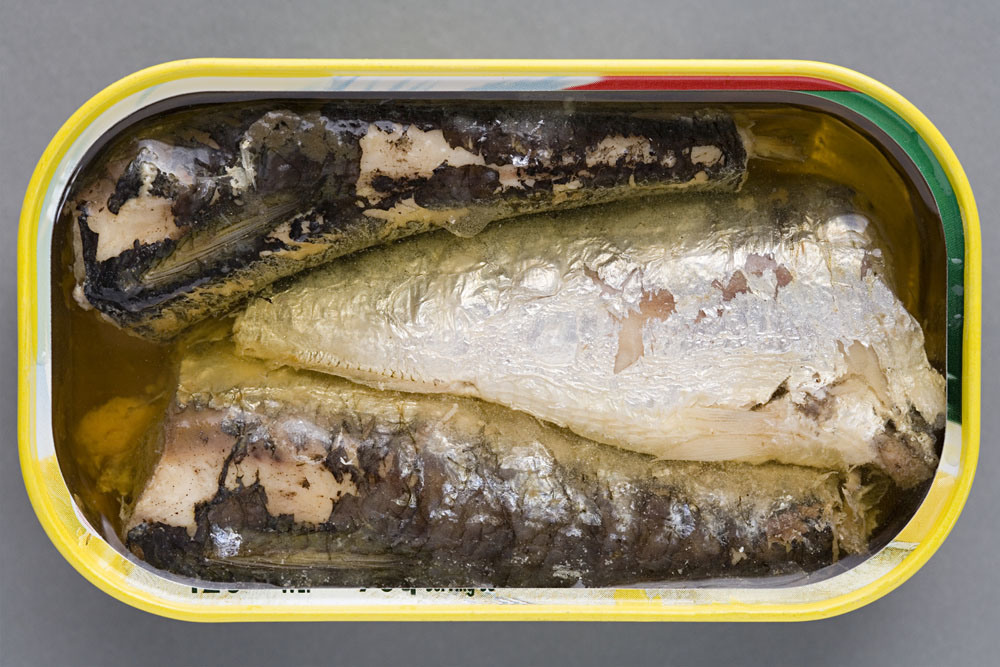Good Quality Canned Mackerel in Oil