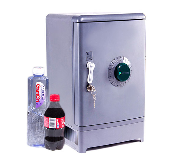 Thermoelectric Mini Fridge 15liter DC12V, AC100-240V for Cooling and Warming