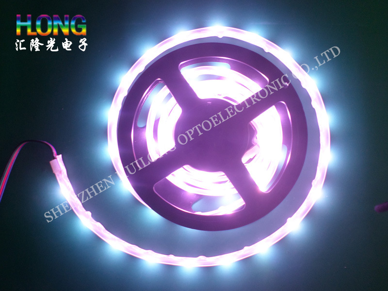 LED Strip Light SMD 5050 Waterproof DC12V