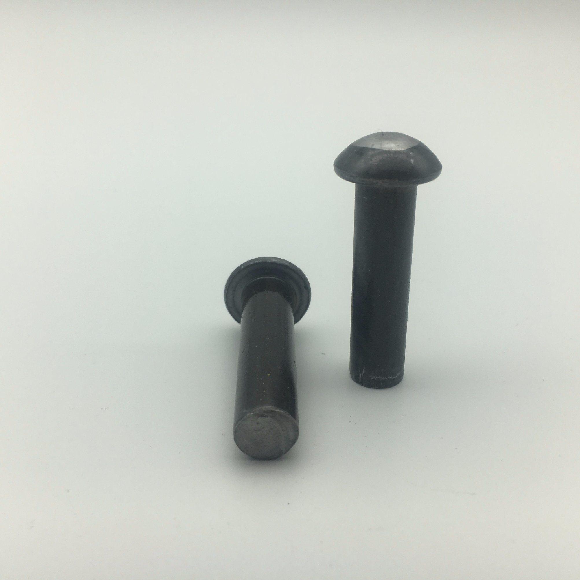 [Hot Item] Pan Head Rivet Screw Bolt Stainless Steel