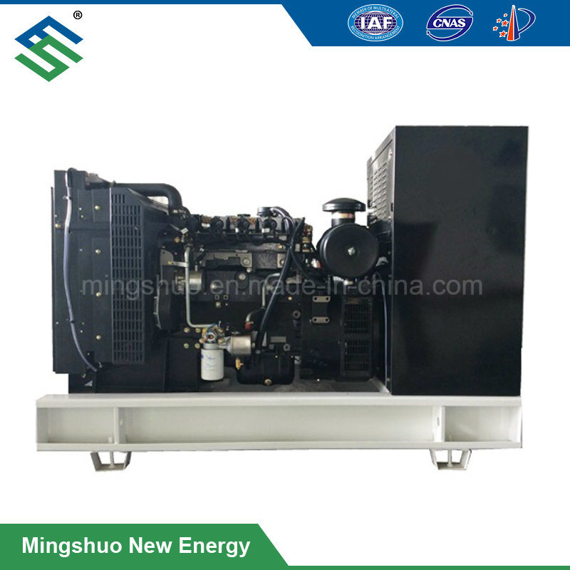 [Hot Item] 30kw Biogas Generator for Small Biogas Plant