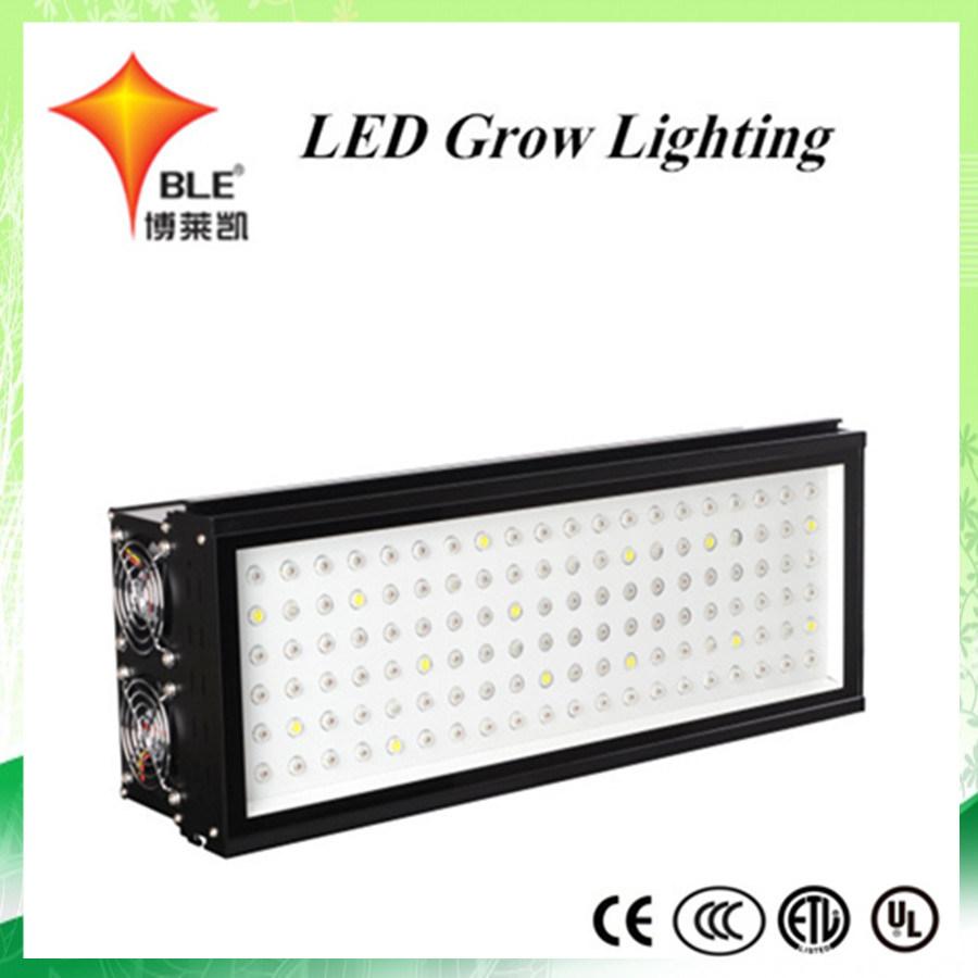 ballast kits led metal lighting ecknowvrarwu light output bulb electronic lamp double china grow product halide ceramic kit