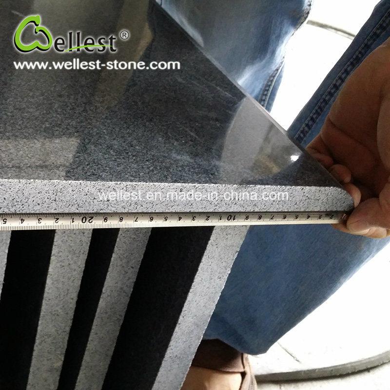 Shenzhen Wellest Industry Inc.