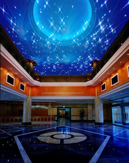 China Fiber Optic Star Ceiling - China Diy Fiber Optic ...