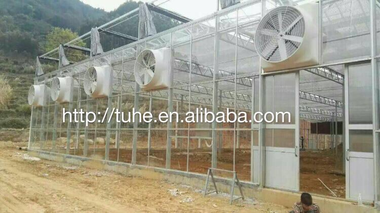 Industrial Ventilation Centrifugal Exhaust Fan Greenhouse Equipment