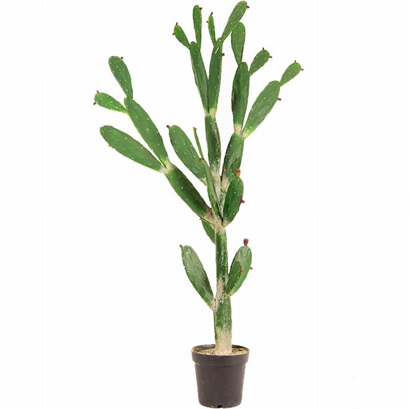 China 155cm Artificial Bungalow Ly, Outdoor Artificial Cactus Plants