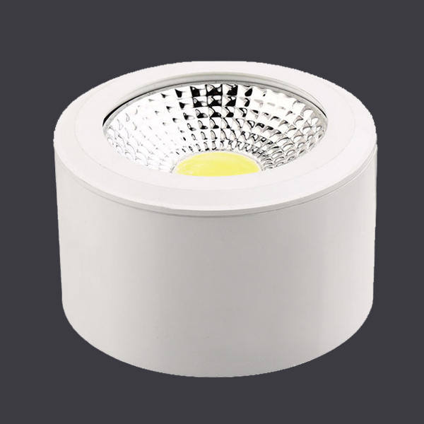 IP65 Waterproof LED Outdoor up Down Light with Ce RoHS