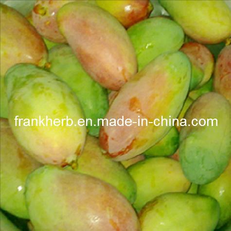 China 10 1 Wild African Mango Extract China Wild African Mango