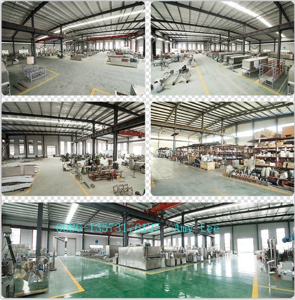 Large Capacity Automatic Nutritional Healthy Dog Cat Fish Pet Feed Machine/Processing Line/Production Line/Plant pictures & photos