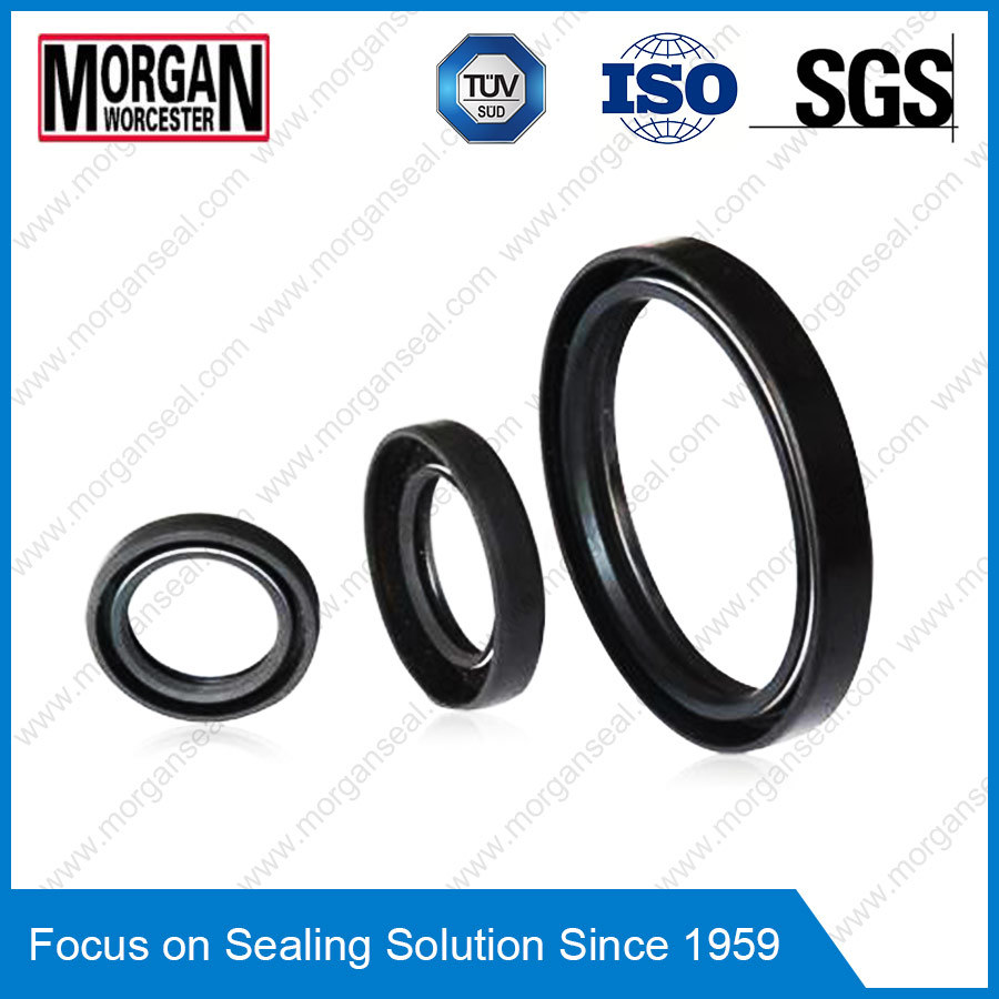 OEM/ODM Custom Rubber Ring as/Tc Type Oil Seal