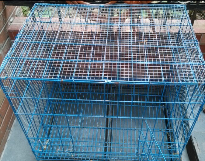 China Stainless Steel Galvanized Wire Mesh Cage Layer Chicken Coop ...
