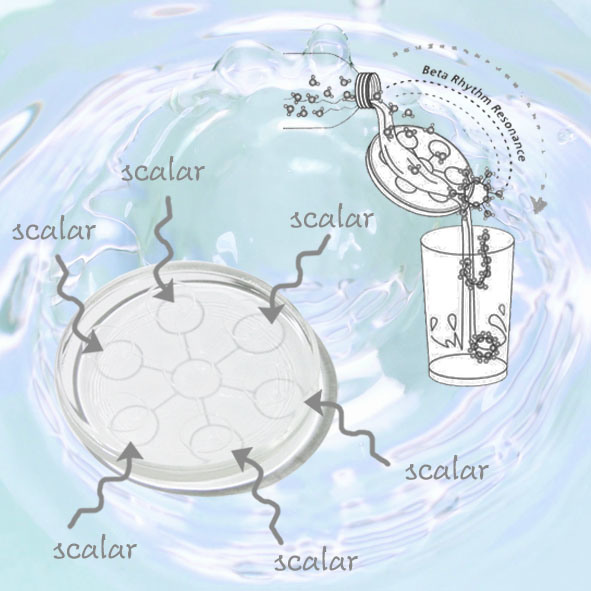 Scalar Energy Bio Disc