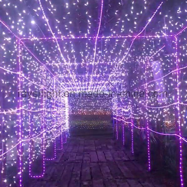 China Lighting Tunnel Diwali Street