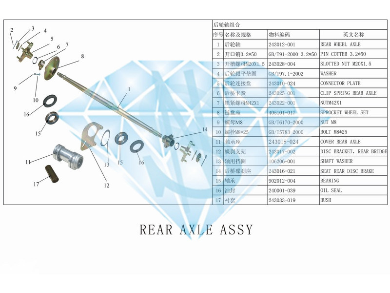China ATV Rear Axle Assembly (ATV 250BS) - China Atv Parts