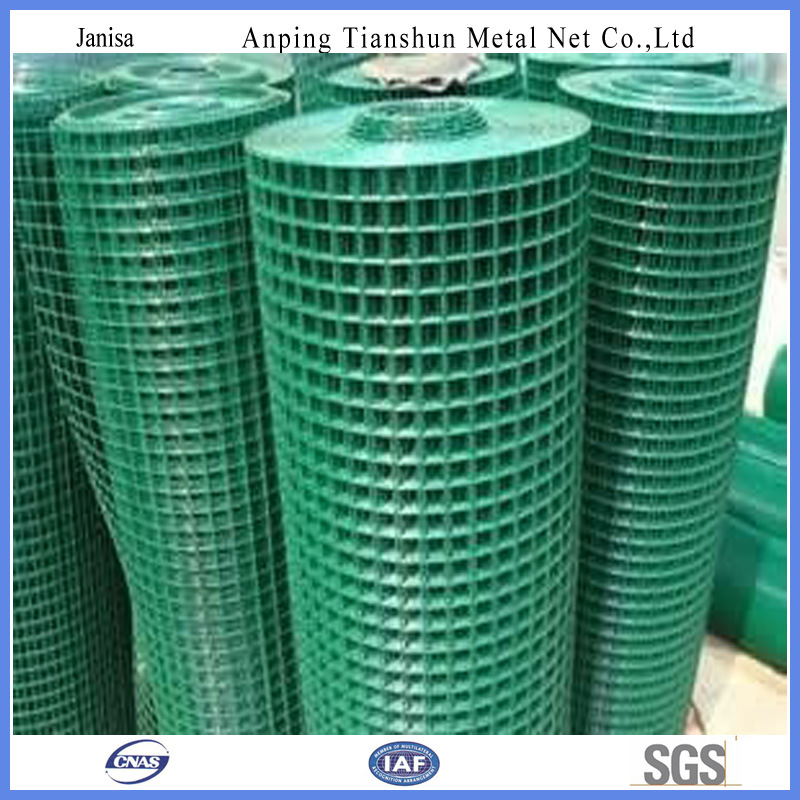 China PVC Coated Green Welded Wire Mesh Roll (TS-J701) - China ...