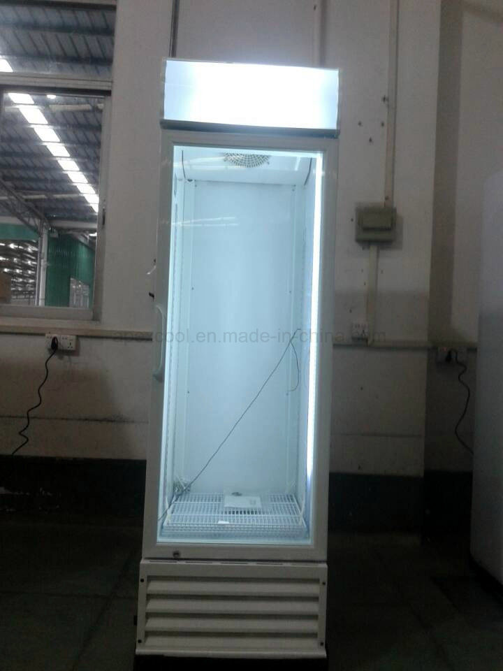 fashion Design Superior Performance Upright Medicine Freezer Showcase pictures & photos