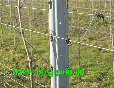 China Vineyard Metal Trellis Post Roll Forming Equipment Supplier