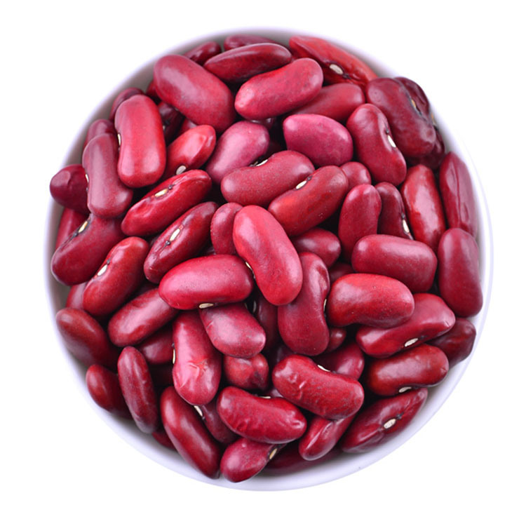 Red Kidney Beans Dry Pulses In Bulk Supplier In China China Red Kidney Beans Kidney Beans