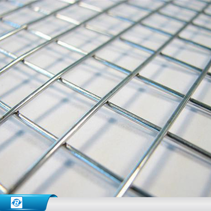 China Galvanized PVC Coated Stainless Steel Welded Wire Mesh - China ...