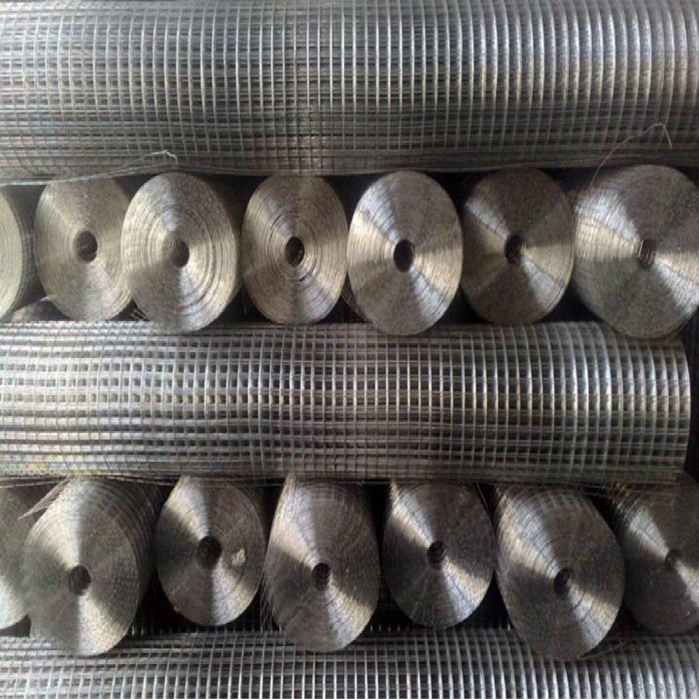 China Advantage Product Electro Galvanized Welded Wire Mesh - China ...