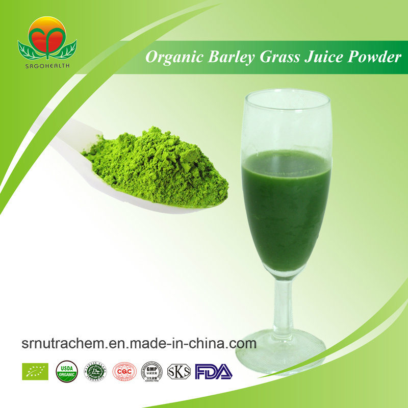Manufacturer Supplier Organic Barley Grass Juice Powder