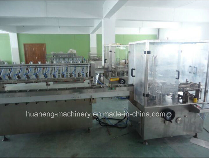 Automatic Facial Masks Bag Cartoning Machine (DZ-120D)