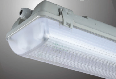 IP65 Tri-Proof Light for Indoor/Industrial/Parks Lighting (CWT500)