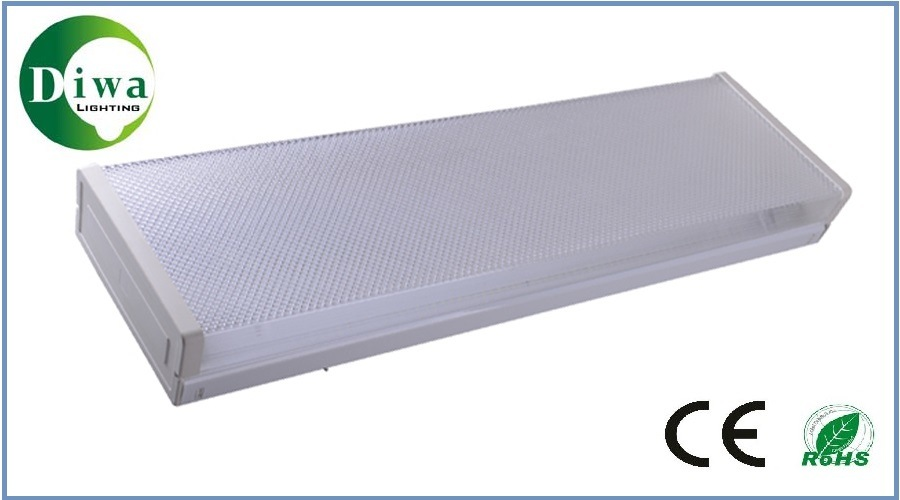 LED Linear Light with CE Approved, Dw-LED-T8zsh-02