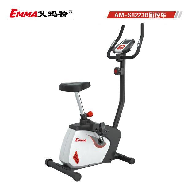 Hot Sale Item Magnetic Bike (S8223W)
