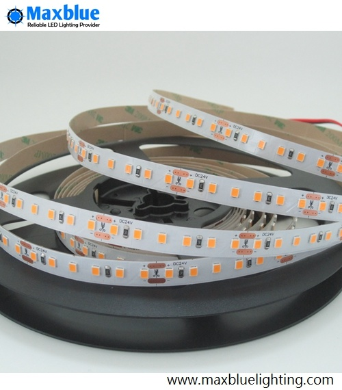 12V/24VDC Flexible SMD2835 LED Strip with Ce RoHS SAA ETL