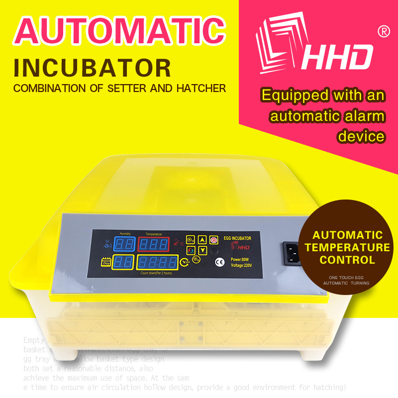 [Hot Item] Holding 48 Eggs Automatic Mini Chicken Egg Incubator for Poultry  Equipment (EW-48)